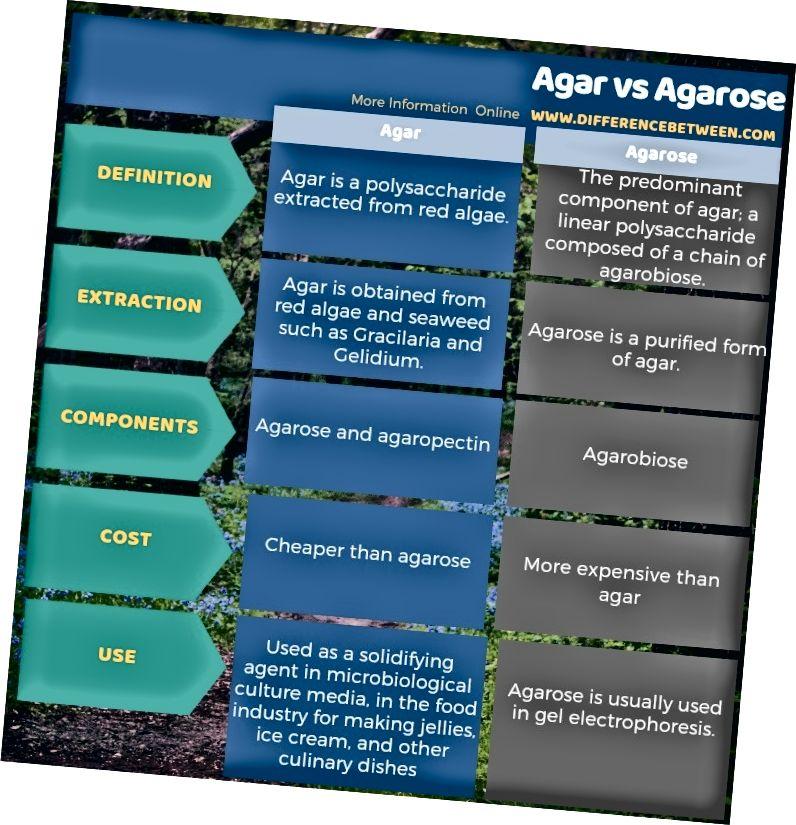 Разлика между агар и агароза в таблична форма
