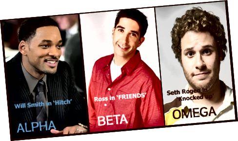 Rozdíl mezi alfa samcem a beta samcem