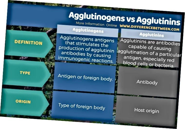 Diferència entre aglutinògens i aglutinines en forma tabular