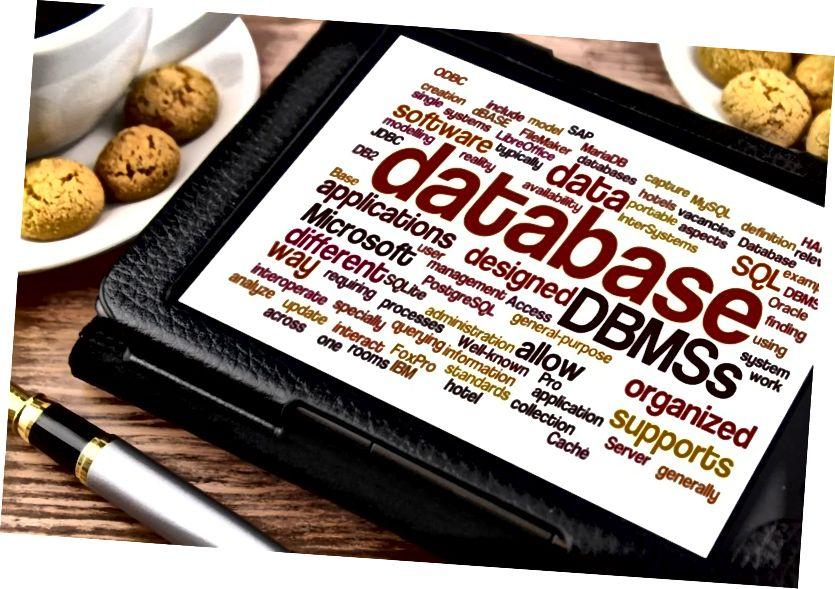 Rozdíl mezi DBMS a systémem pro správu souborů