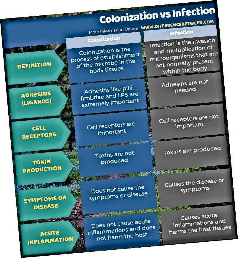औपनिवेशीकरण और संक्रमण के बीच अंतर - सारणीबद्ध रूप