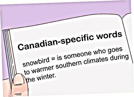 Kanada slangini o'z ichiga olgan