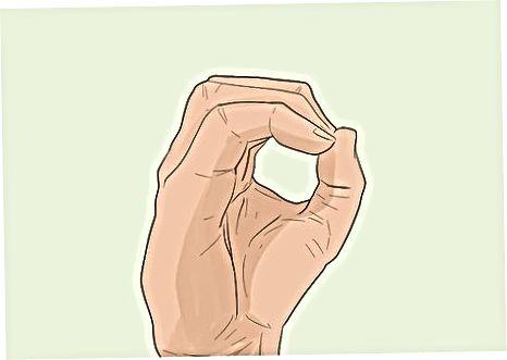 ASL / ISLdagi unlilar
