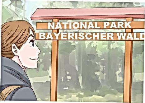 Germaniyaga sayohat