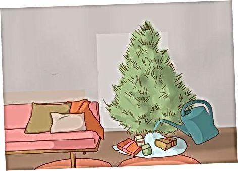 Cuidando da árvore em casa