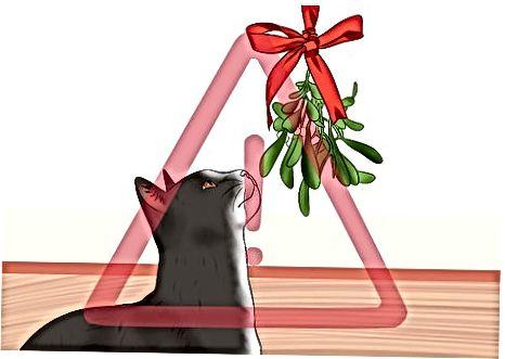 आपल्या मांजरीचे इतर सुट्टीच्या धोक्यांपासून संरक्षण करणे