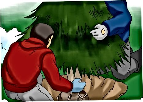 Menanam Pohon Anda