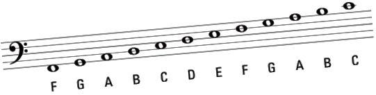bass clef notater