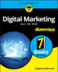 Alt-i-ett for digital markedsføring for dummies