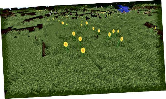minecraft слънчогледови равнини биом