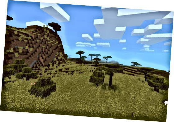 минерал савана биома