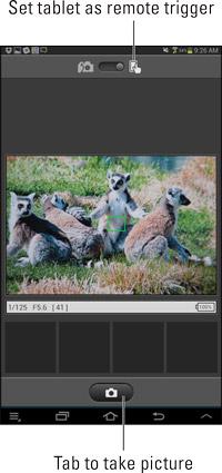 Live View-forhåndsvisningen vises på enhedens skærm; tryk på kameraikonet for at udløse lukkeren.