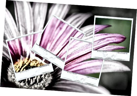 gjenopprette farge til bilder med dype læringsapplikasjoner
