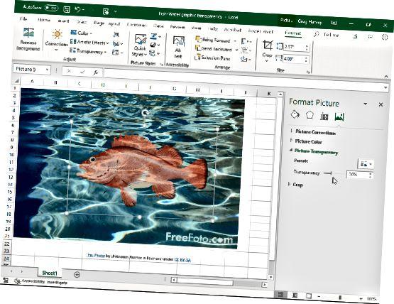 पारदर्शिता स्लाइडर का उपयोग करके पारदर्शिता को संशोधित करना।