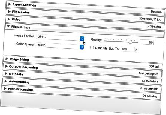 Lightroom Classic File Settings-panelet