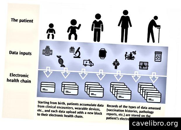 Les données recueillies au cours de la vie d'un patient pourraient être intégrées de manière sécurisée dans le système EHC unique du patient.