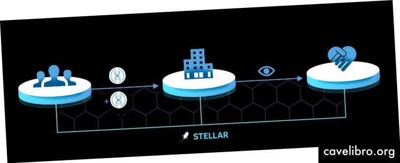 Slika 2: Ponazoritev procesa STEMchain