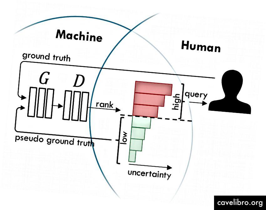 Inimese ja masina koostöö õppimine GAN-ide abil