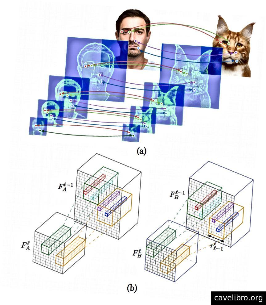 (a) À chaque niveau du réseau, les meilleurs amis neuronaux activés sont mis en évidence. (b) Un mappage de caractéristiques d'une couche convolutionnelle à son champ récepteur associé dans la couche précédente. Seules les régions saillantes qui passent une activation de seuil sont sélectionnées dans la couche précédente.¹