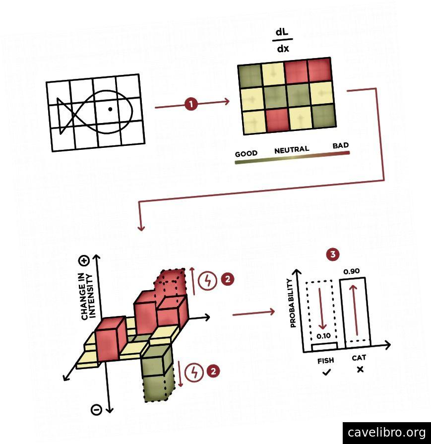 डीएल / डीएक्स और पुनरावृत्ति अनुकूलन आधारित हमलों के आधार पर एडिटिव दोनों विपरीतार्थी गड़बड़ी के लिए व्हाइटबॉक्स हमलों का चित्रण। एक बार dL / dx की गणना हो जाने के बाद (चरण 1), कोई एक खेल के रूप में हमले की प्रक्रिया को देख सकता है जहां एक खिलाड़ी (हमलावर) कुछ संकेत के आधार पर इनपुट के पिक्सेल मूल्यों (चरण 2) को समायोजित कर सकता है, अर्थात ढाल dL / dx , एक मॉडल को मूर्ख बनाने के लिए (चरण 3)।