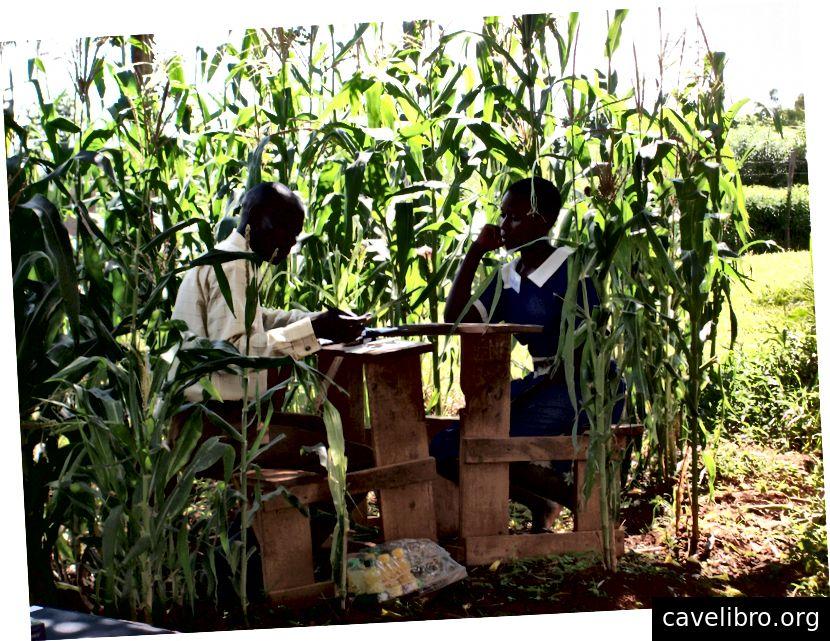 Déploiement de l'enquête, Kenya Life Panel Survey 2010 (crédit: Lisa Chen)