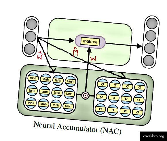 सरल (रैखिक) संख्यात्मक कार्यों को सीखने के लिए एनएसी वास्तुकला