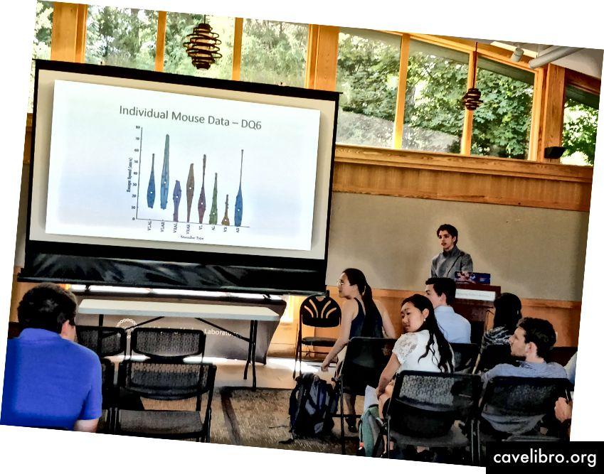 Présentation finale de Daniel pour le programme de recherche de premier cycle de la CSHL (Crédit photo: Anne Urai)