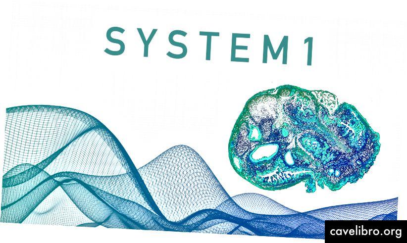 Dizajniran od strane Machine Learning Memoirs Inc. Slika označena za ponovnu upotrebu s odgovarajućim kreditima