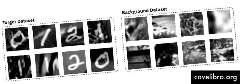 Exemples d'images dans le jeu de données cible (à gauche) et le jeu de données en arrière-plan (à droite).