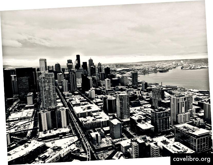 Quang cảnh Seattle từ kim không gian