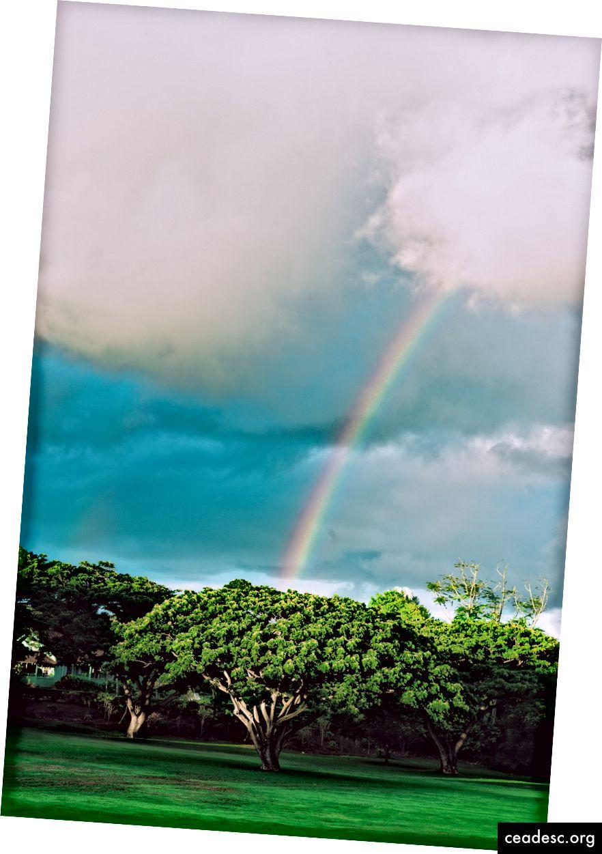 Kauai, 2017. Autor Josh S. Rose