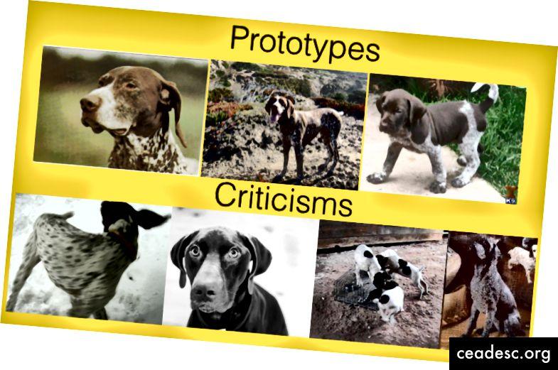 MMD-critical también se puede aplicar a representaciones de datos intermedios que han pasado por una etapa de inclusión o una parte de un modelo más grande. Aquí, se visualiza una sola categoría de ImageNet después de pasar por una incrustación de imágenes. En este espacio de representación, las imágenes frontales a todo color son prototípicas de esta categoría, mientras que las imágenes en blanco y negro y los ángulos de visión extraños son excepciones.