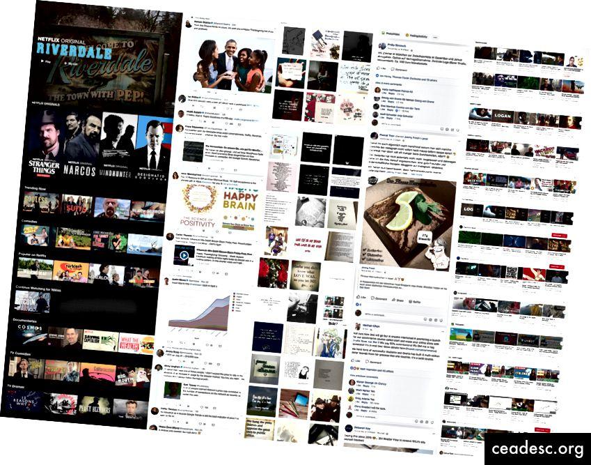 Algunos de los feeds más populares.