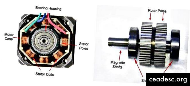 Para la ciencia, este motor paso a paso acordó abrirse después de su muerte (fuente)