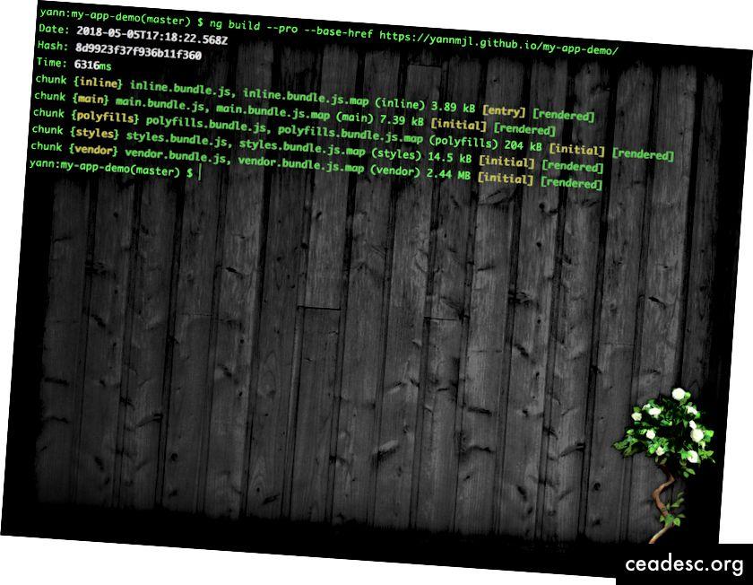 Ekraanipilt terminalist - mac
