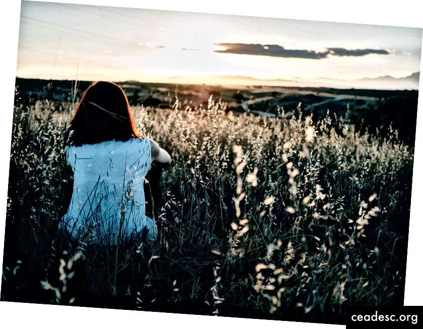 """""""Tüdruk, kes istub maal põllul päikeseloojangut vaadates"""", autor Edu Grande saidil Unsplash"""