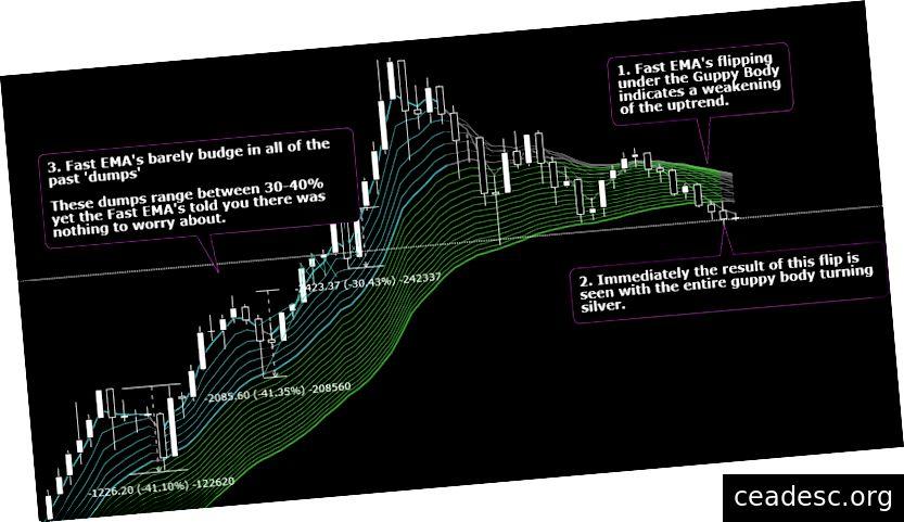 Siin näeme hiljutist ebakindlust turul, mida illustreerib see, kui kiire EMA libiseb ainult selles viimases prügimäes.