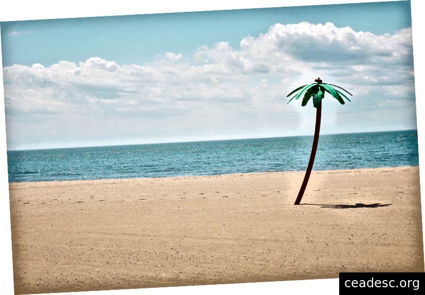 Faux palmier sur une plage Photo de Maarten van den Heuvel sur Unsplash