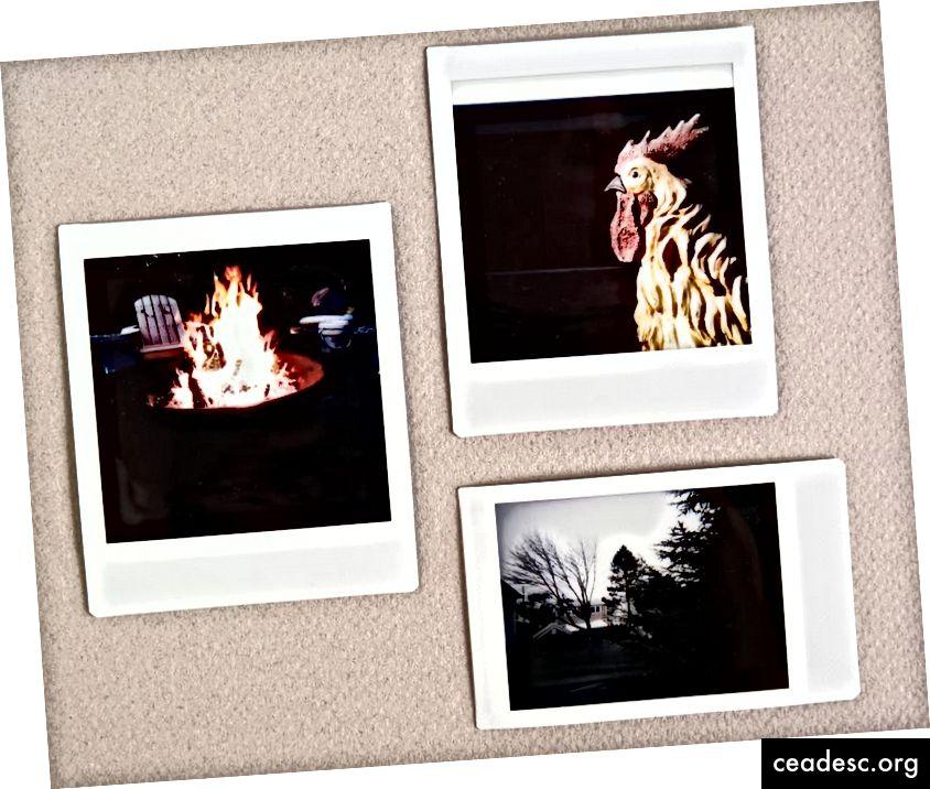 Въпреки че изображенията могат да бъдат меки, повечето незабавни камери могат да създават снимки с тъмни тонове, които имат дълбоко, богато качество. (Снимка: Тери Съливан)