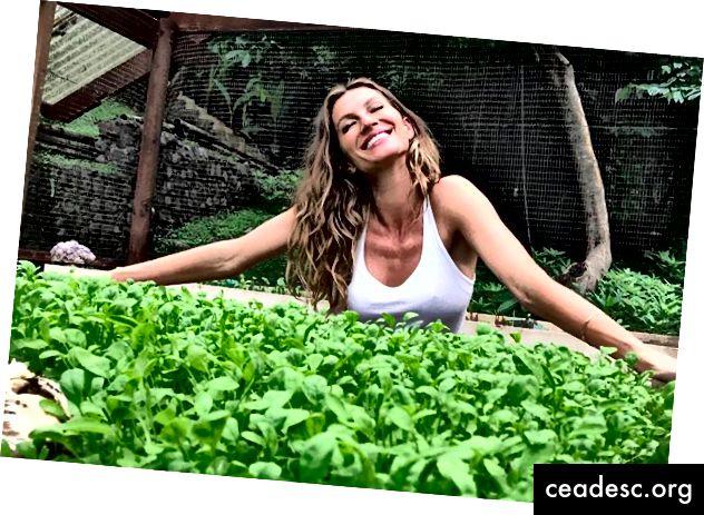 Gisele ama i suoi verdi!