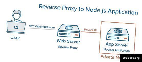 configuration unique de Nodejs avec proxy inverse