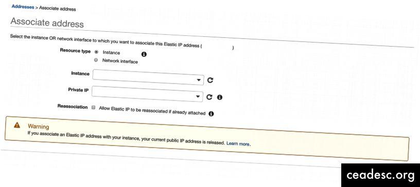 Paso 2 - Asociar Elastic IP con instancia