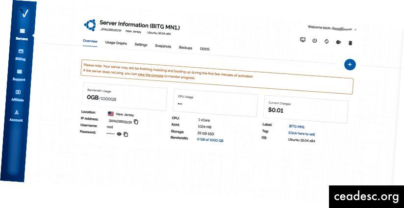 Página de información del servidor Vultr