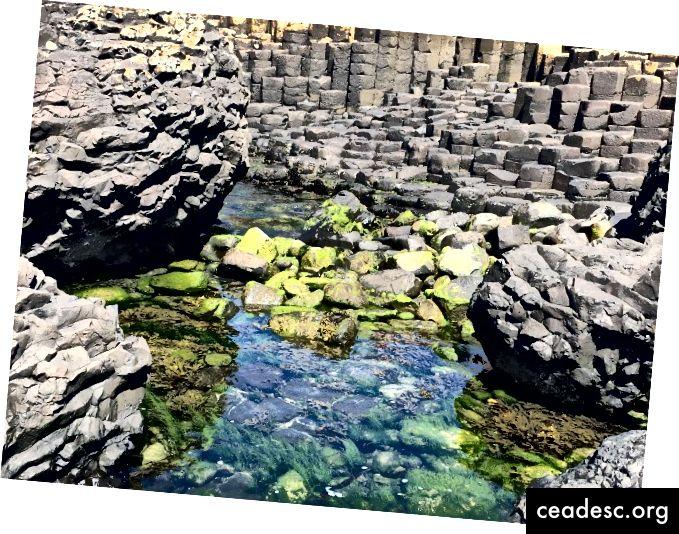 Piscina di marea presso Giant's Causeway © pam lazos