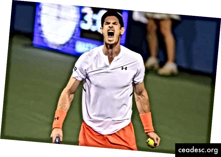 Andy Murray ăn mừng một điểm trong chiến thắng trước Marius Copil tại Citi Open vào tháng 8 năm 2018. Ảnh: Mitchell Layton / Getty Images