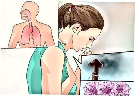 Astma begrijpen