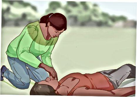 척수 손상 평가