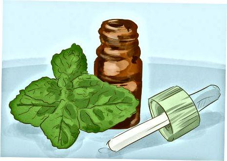 Kruiden gebruiken voor longgezondheid