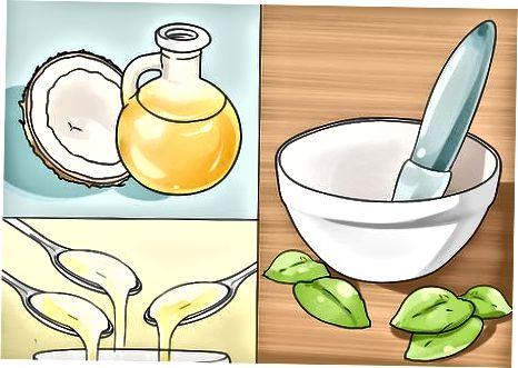 Utilització d'herbes i remeis casolans