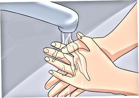 El tractament de Giardiasis